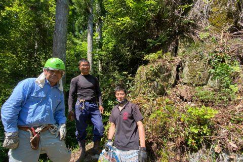 樵廡洞下への岩間つつじ植栽